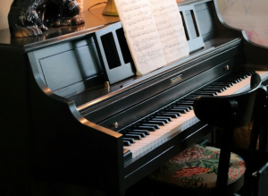 Friday Mindfulness: Wonderful Warren, Pianos and NYC Pizza